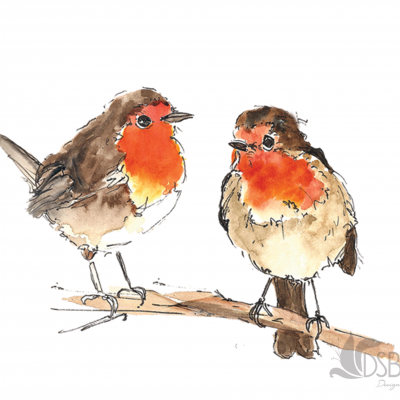 Two robins looking around resting on a branch